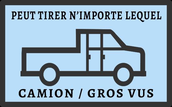 PEUT TIRER N'IMPORTE LEQUEL - CAMION / GROS VUS